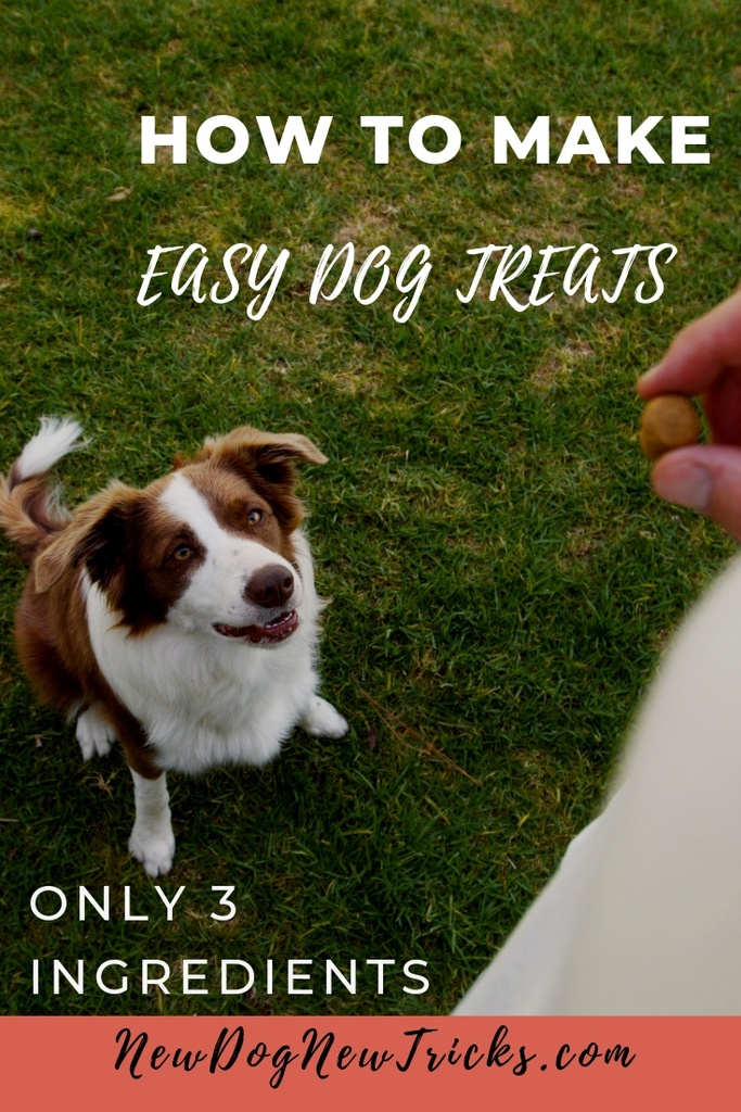 How to Make Easy Dog Treats – Only 3 Ingredients P2