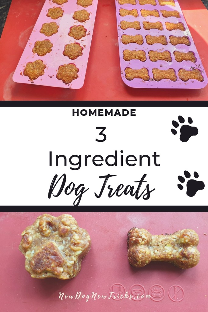 How to Make Easy Dog Treats – Only 3 Ingredients P4